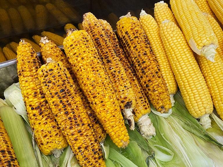 Vegan Misir Corn Turkish