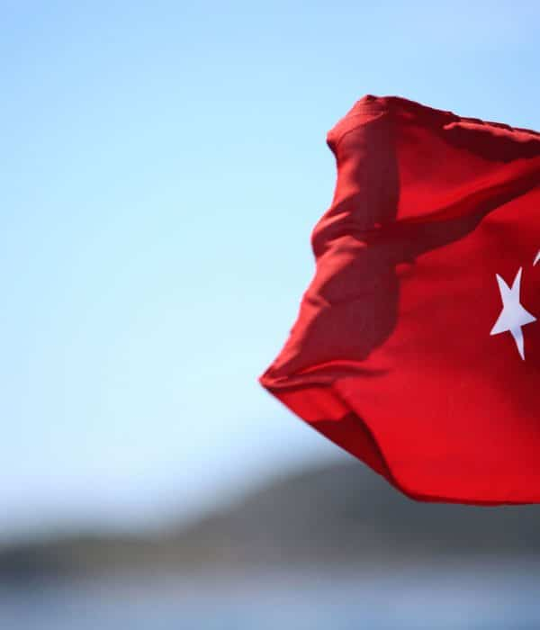 The History and Meaning of Turkish Flag
