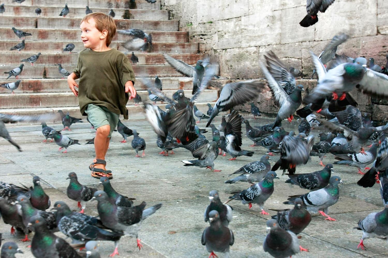 Tour Photos Istanbul Happy Kid