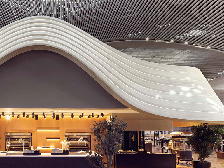 Turkish Airlines Lounge New Airport